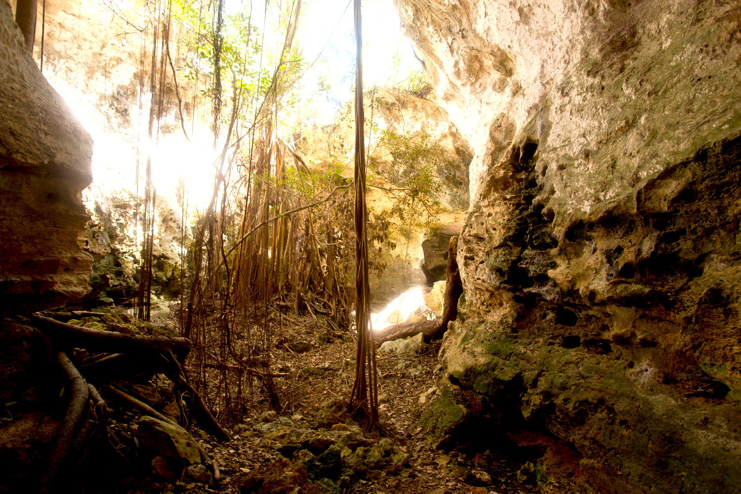 rock_sound__caves_eleuthera-3