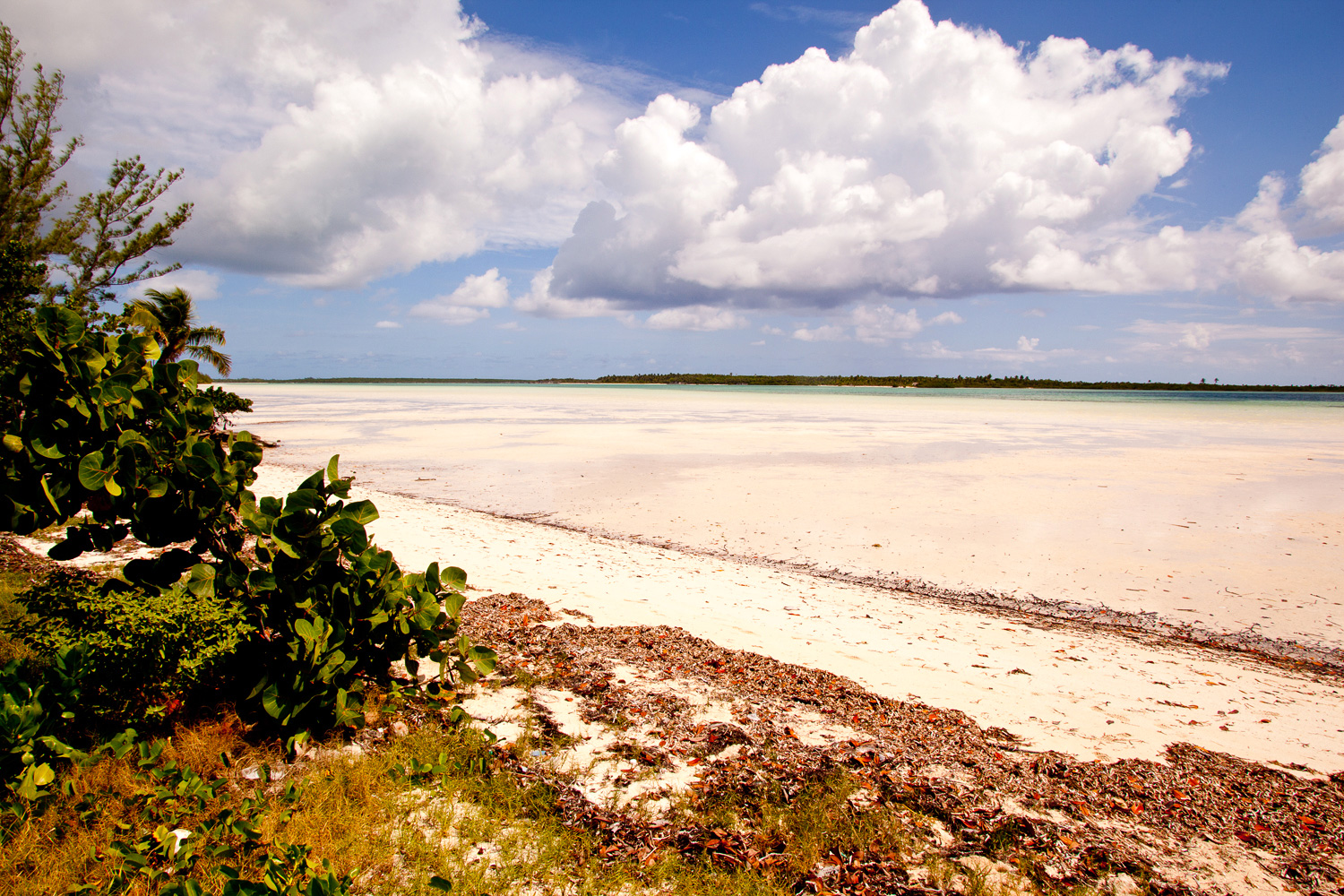 savannah_sound_eleuthera-2